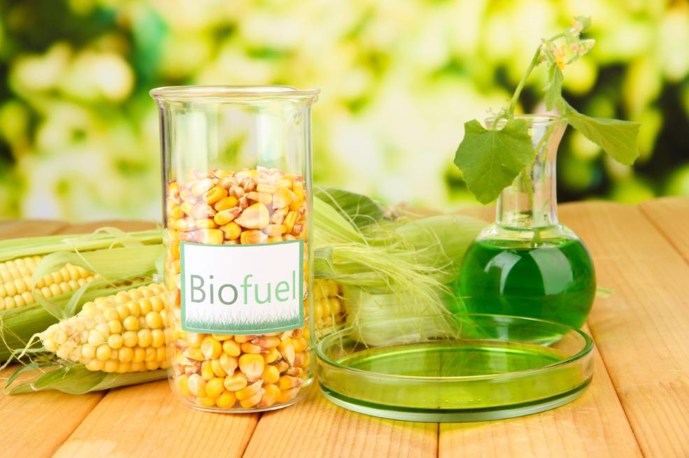 conceptual photo of bio fuel on bright background ethanol. Black Bedroom Furniture Sets. Home Design Ideas