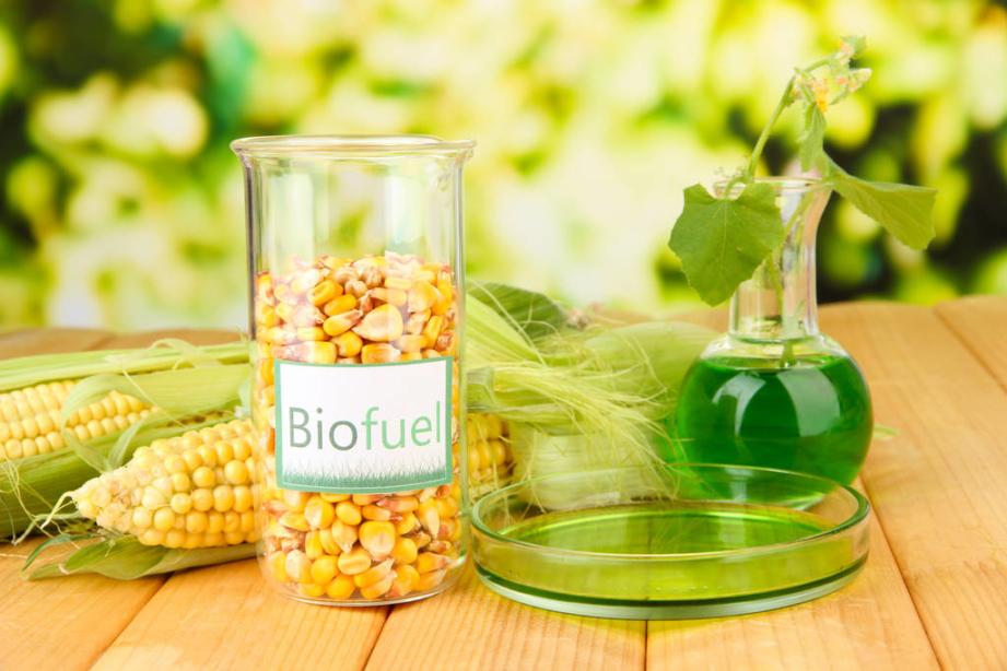 Was ist Bioethanol?
